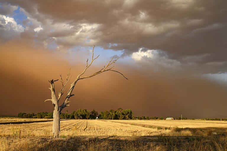 02 Oncoming Dust Storm small
